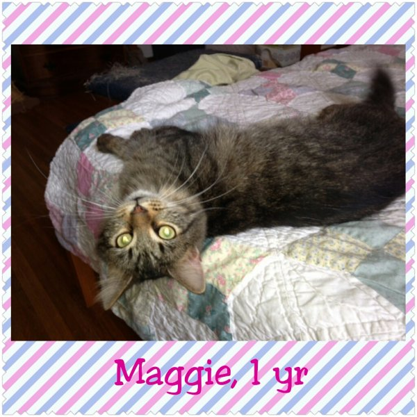 2015Maggie