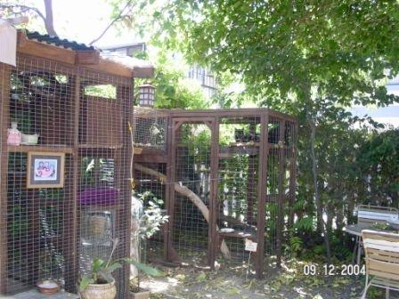 Figure 9 U0026 10: Cat Kennel Built In Back Yard With Chicken Wire And 2x4s