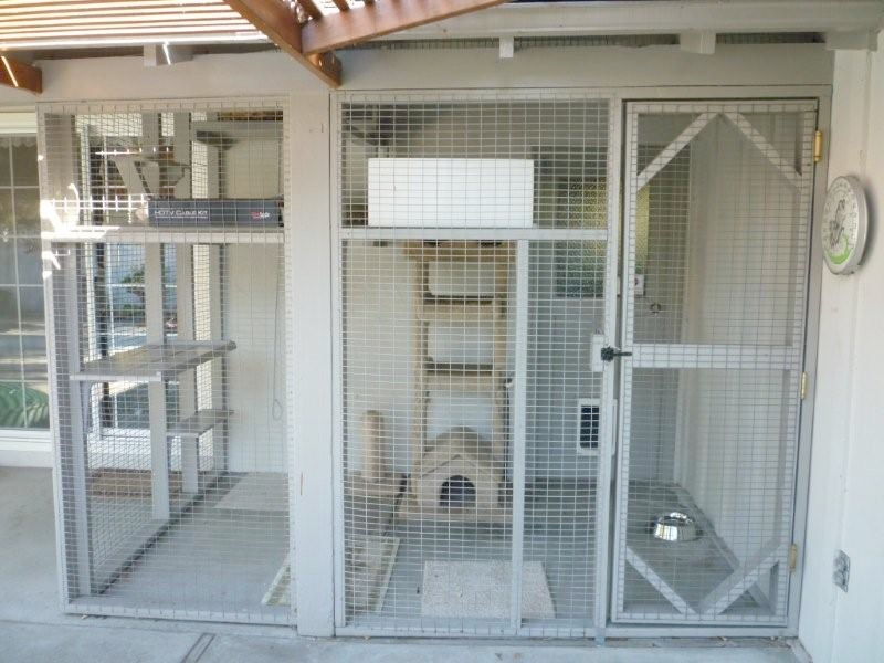 Enclosures For Cats Community Concern