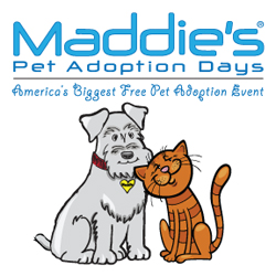MF Pet Adoption Days